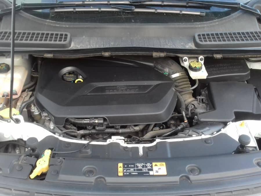 2015 Ford Escape - Interior Rear View