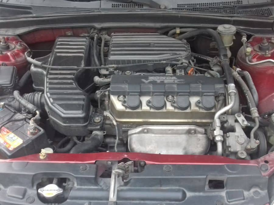 2004 Honda Civic - Interior Rear View