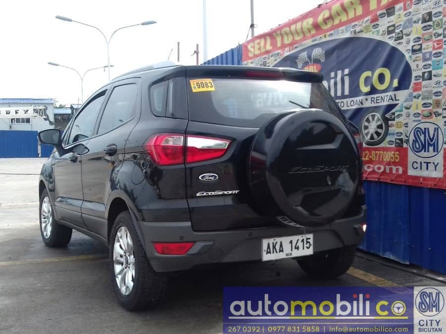 2015 Ford EcoSport - Rear View